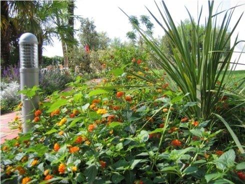 I parchi di Varroto Hobby Verde