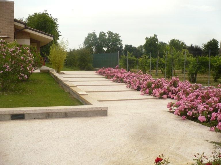 Allestimento piante ornamentali