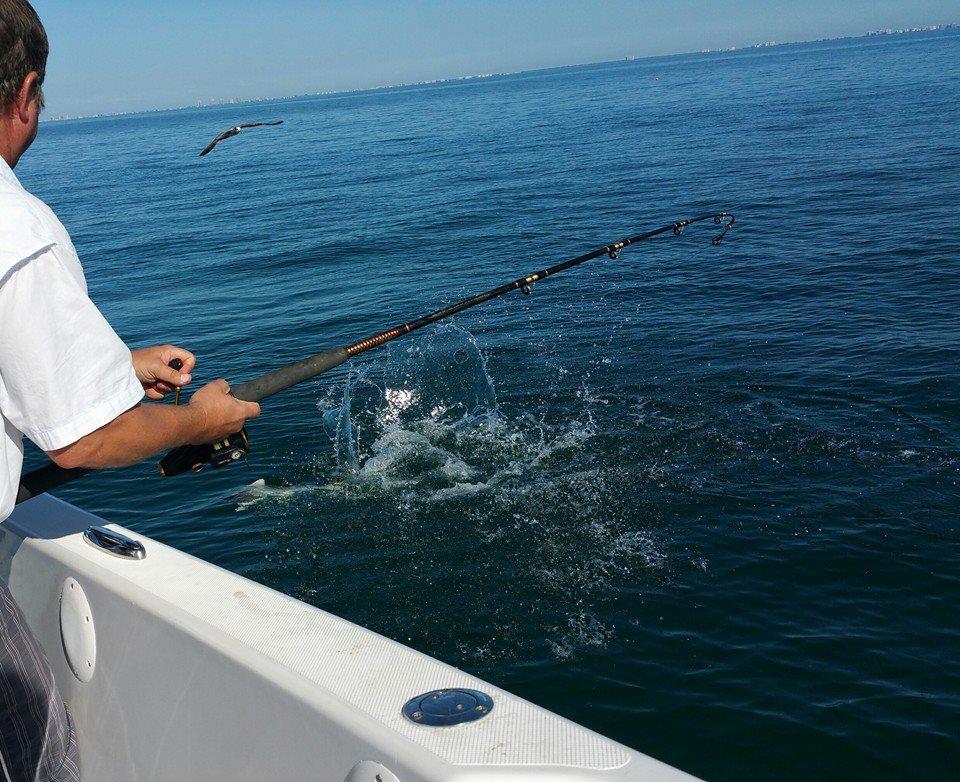 Naples bonita springs marco island estero fishing for Bonita springs fishing charters