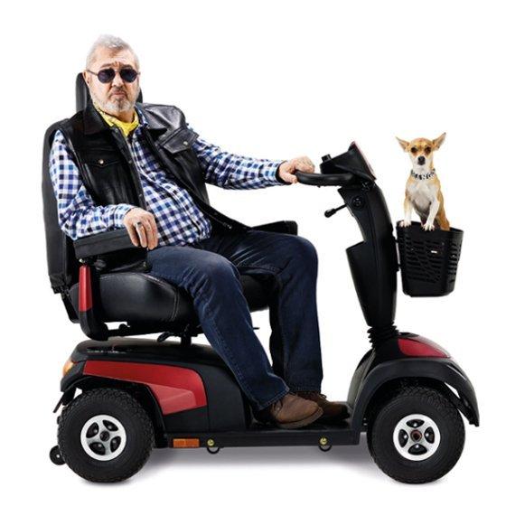 uomo su uno scooter con cane a bordo