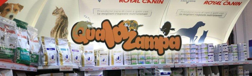 scaffali cibo cani e gatti