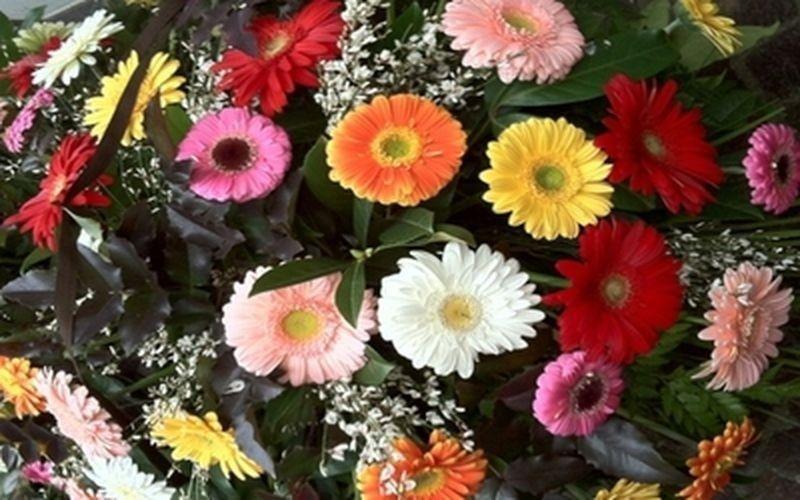 Cuscino di fiori misti