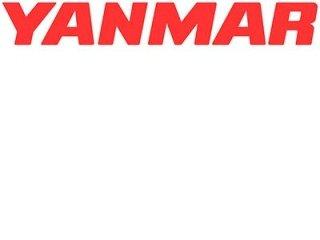 Assistenza motori Yanmar