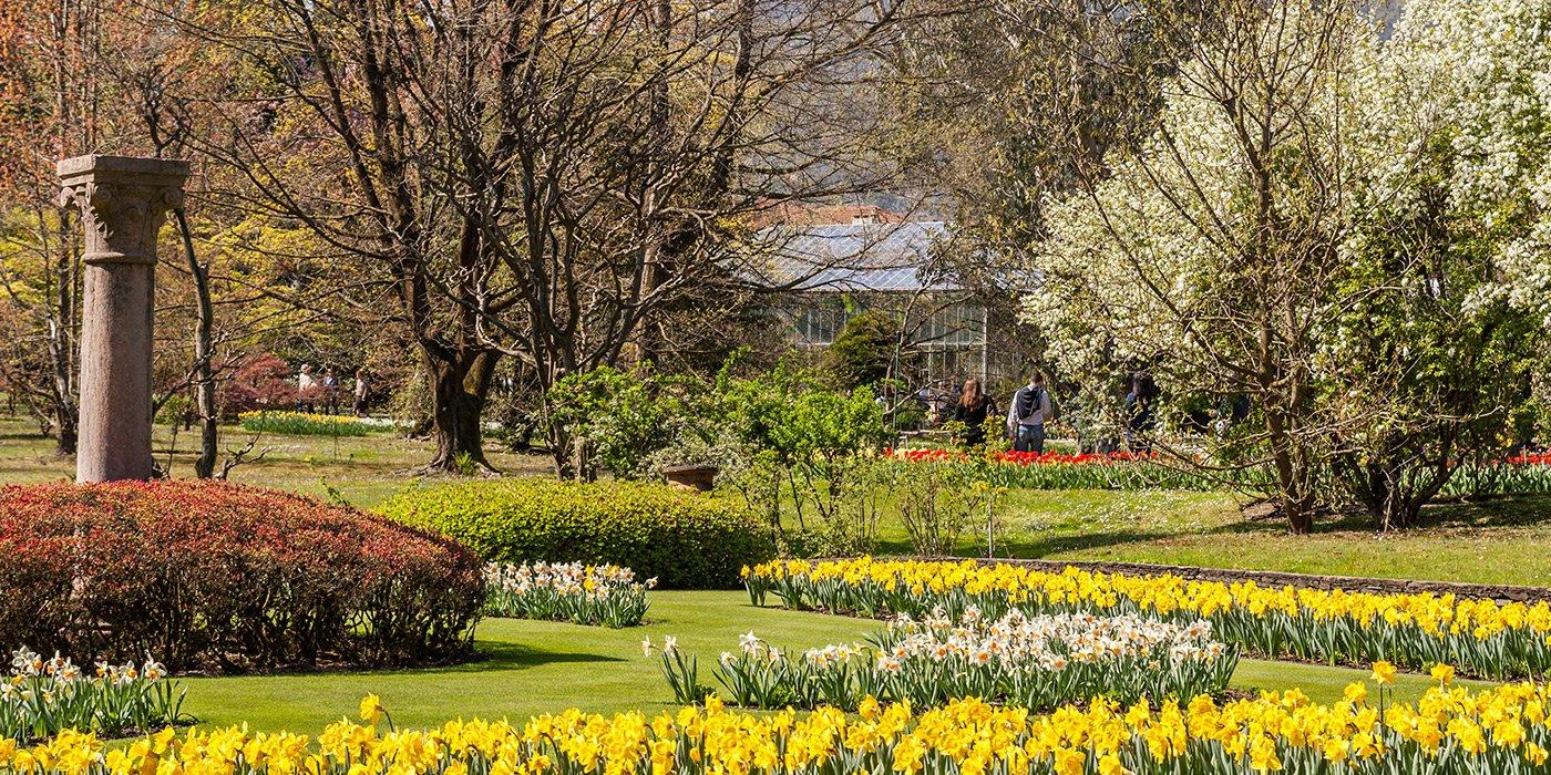 giardino con colonne, alberi ,fiori e piante di diversi colori
