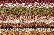 cereali e granaglie