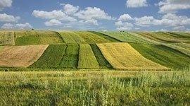concimi agricoltura