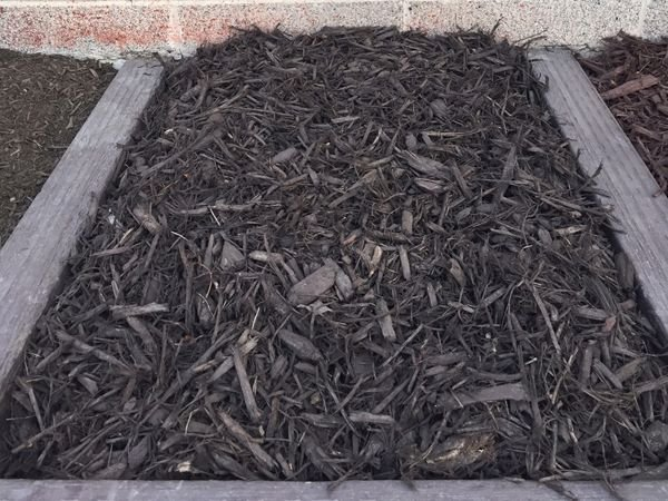Chocolate Brown Colored Mulch for sale Salt Lake City - Mark's Lawn and Garden Supply