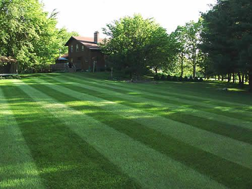 Lawn mowing service for large yards