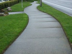 Notice how manicured this edging looks along walks