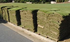 Fresh Sod delivered to your home on 500 sq foot pallets
