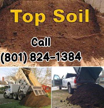 High-quality screened topsoil delivered in any quantity - spreading and grading also available