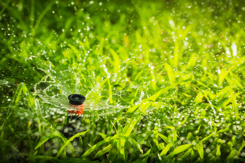 Sprinkler system on