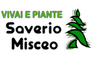 logo saverio misceo