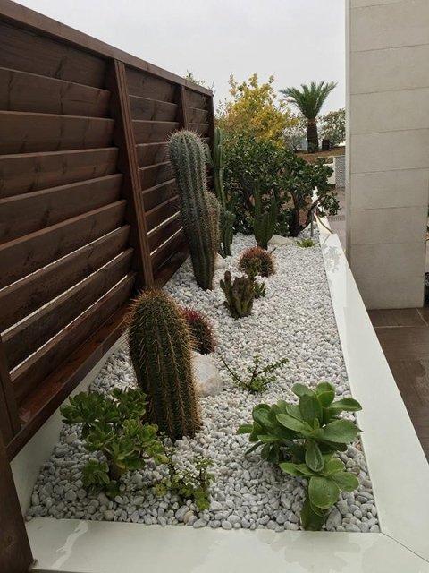 panoramico terrazzo privato con angolo di piante grasse