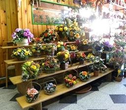 allestimento piante da interni da fiorista