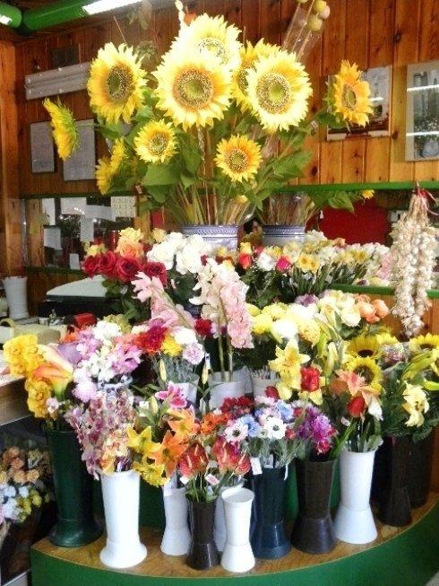 fiori recisi in vasi