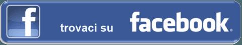 Facebook Grossi Luigi Professional Security Latina