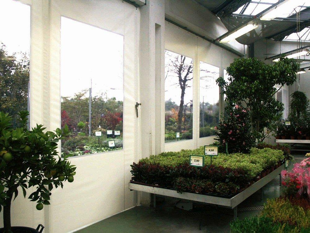 casa con piante