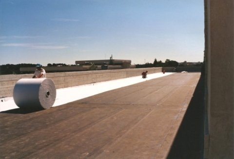 guaina su tetto