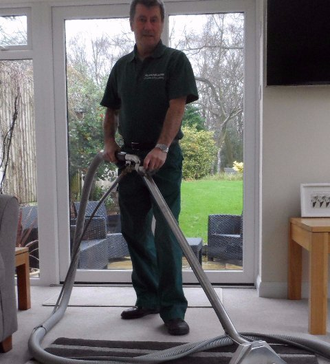 expert carpet cleaner