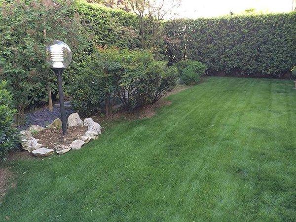 Prato verde con siepe intorno e un lampione nel giardino