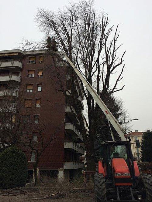 Un mezzo da lavoro con un braccio mecchanico  mentre pota  degli alberi davanti uno stabile in citta