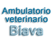 AMBULATORIO VETERINARIO BIAVA