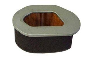 filtro aria motozappa
