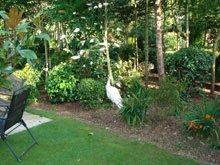 A white heron in a garden