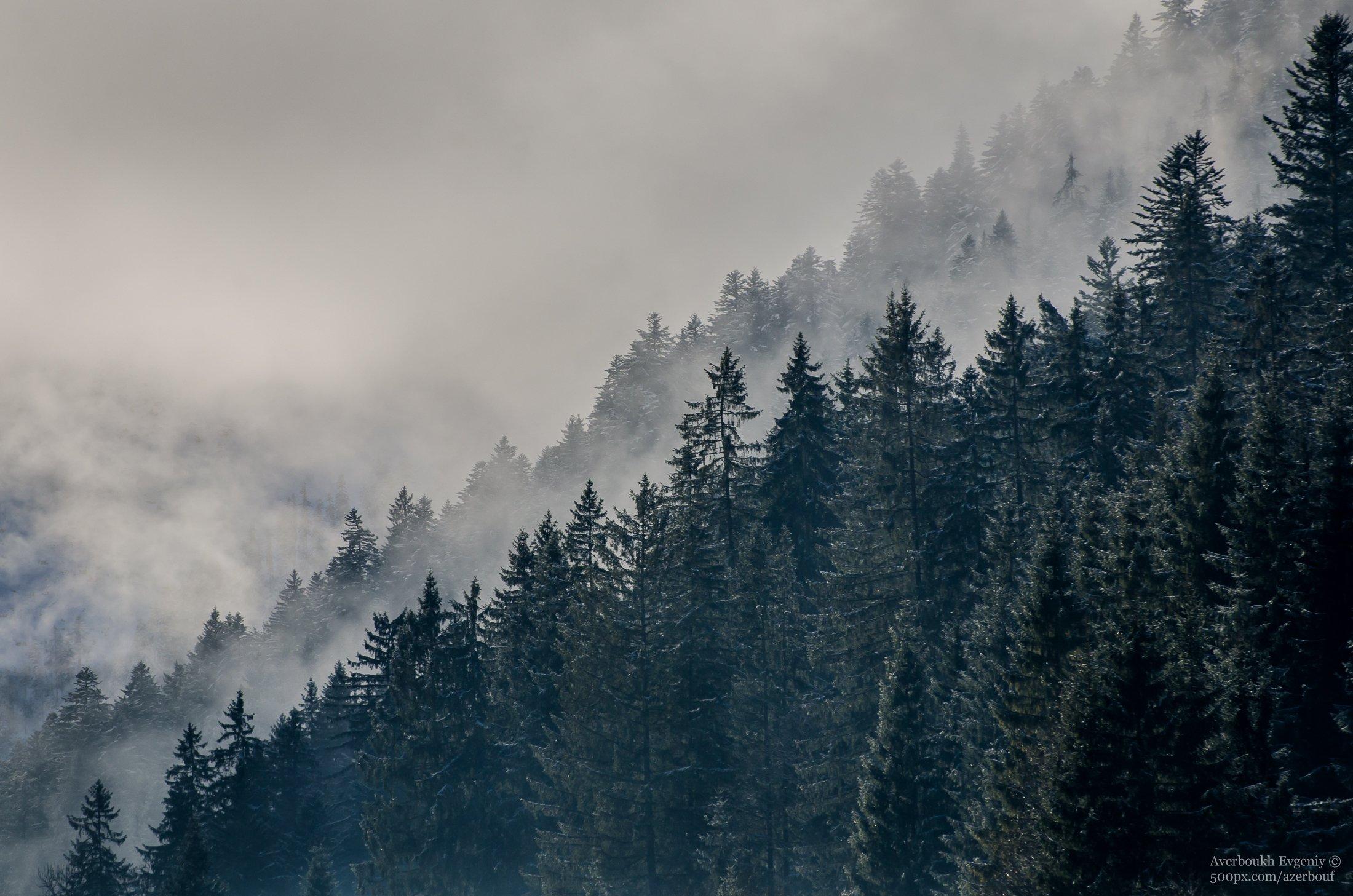 Alps - Austria