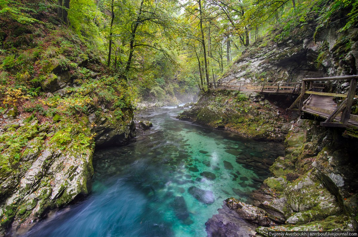 Vintgar Gorge. Slovenia
