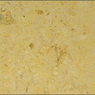 Fossil Oro