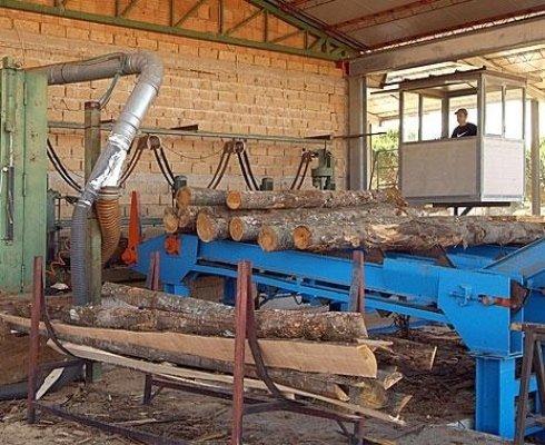 selezione del legname