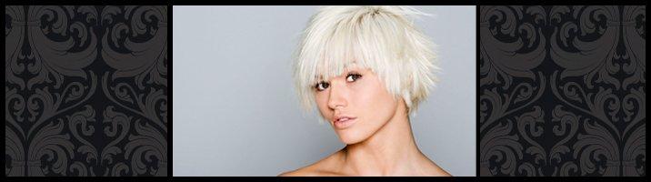 Hairdressing team - Newcastle - Clayton & Company Hairdressing - unisex hair