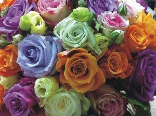 creazione floreale