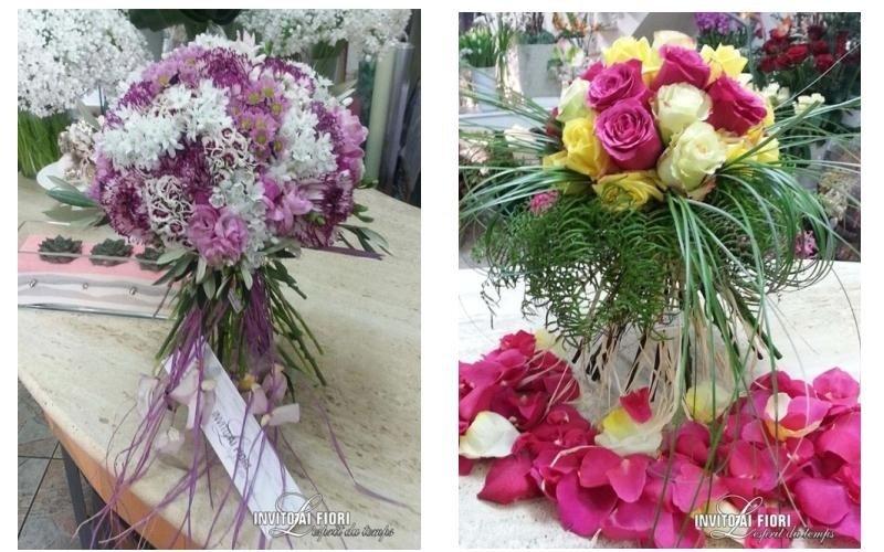 vivaio fiori dall'olanda