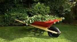 progettazione giardini, manutenzione giardini privati, allestimento giardini