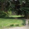 taglio erba e sistemazione prato