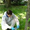 trattamento fitosanitari