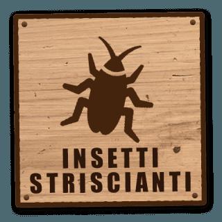 insetti striscianti