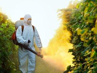 trattamenti antiparassitari frutteti
