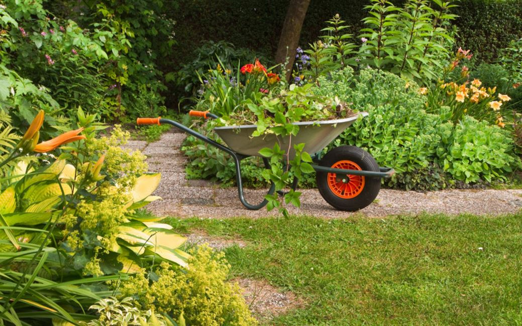 Commercial Domestic Garden Maintenance Services in Bedford