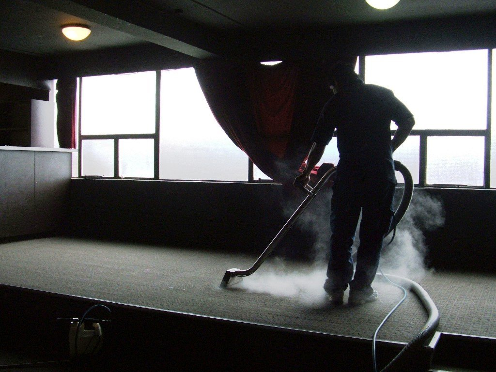 View of professional cleaning the carpet