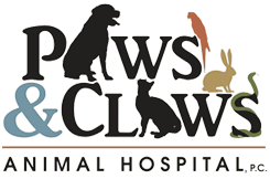 Paws & Claws Animal Clinic Wilmington, NC