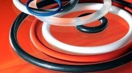 vendita o-rings