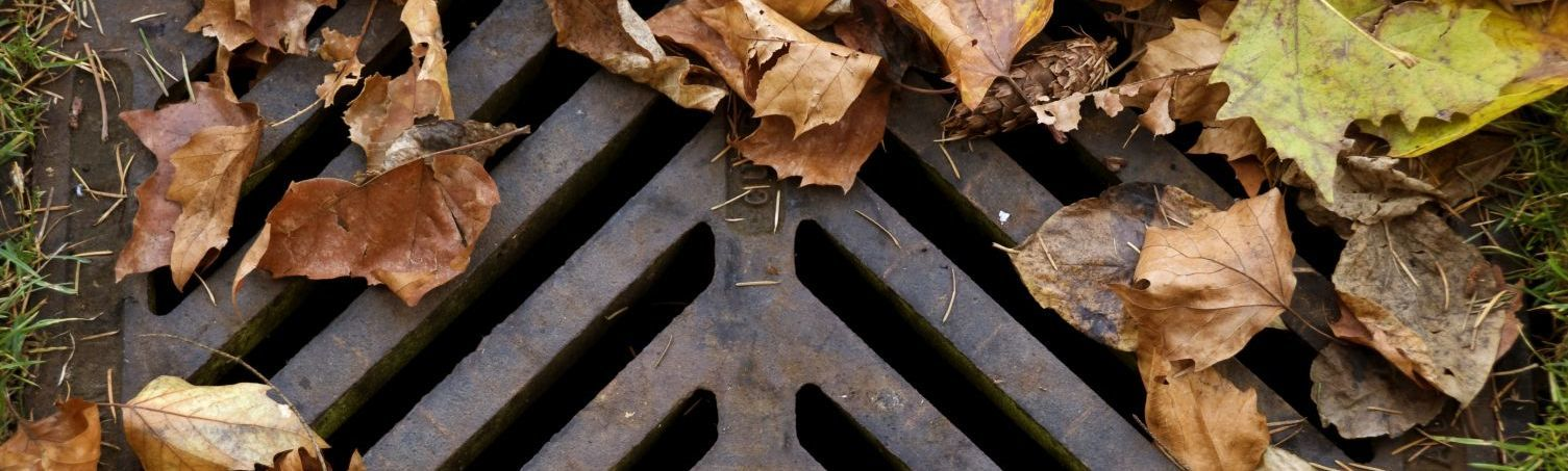 A drain grill that needs sewer cleaning services in Christchurch
