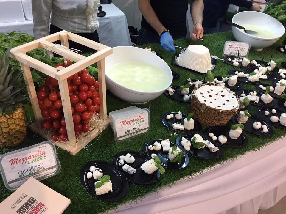 esposizione di diversi formaggi e prodotti freschi