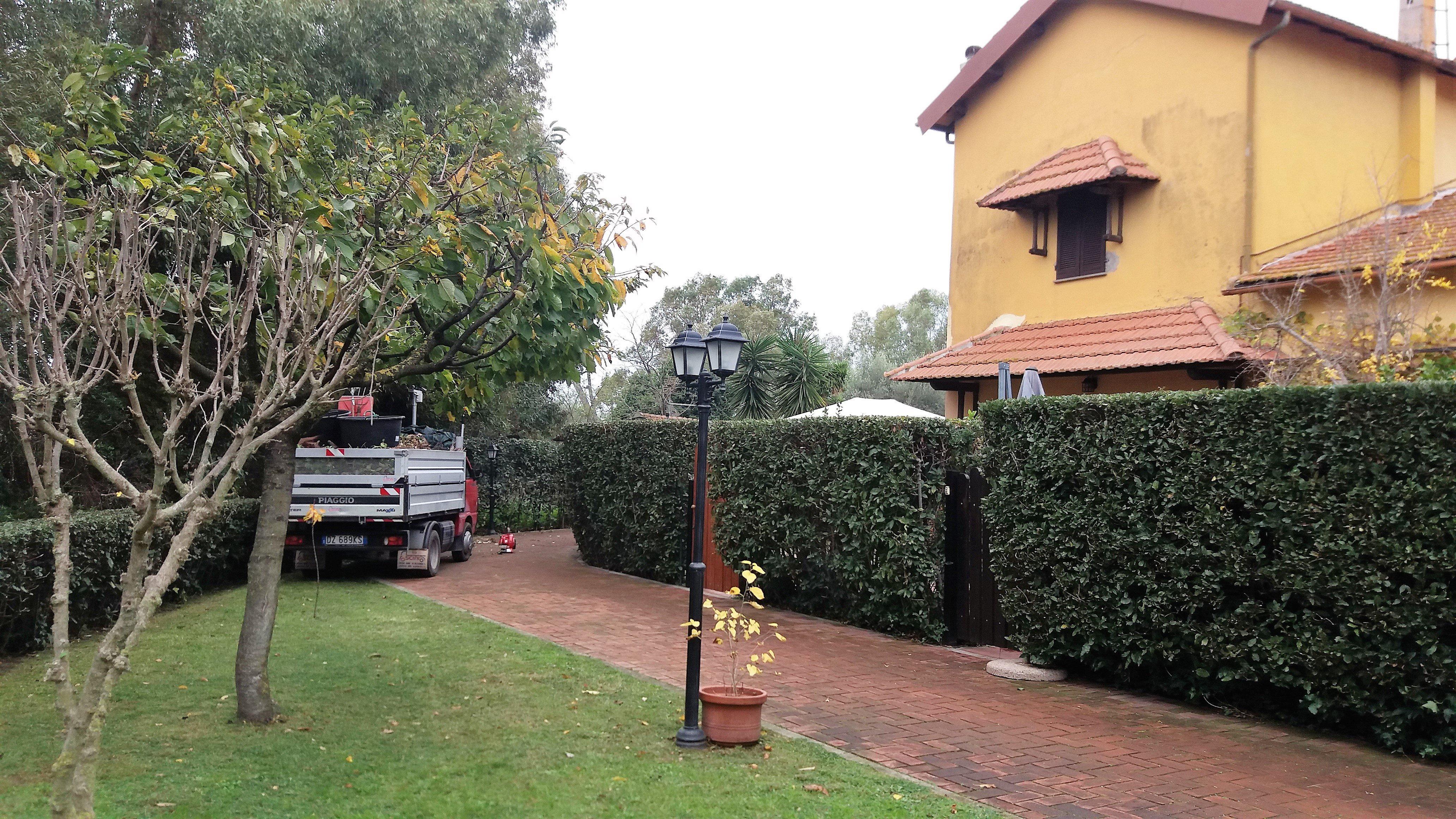 servizio di giardinaggio e potatura a Roma