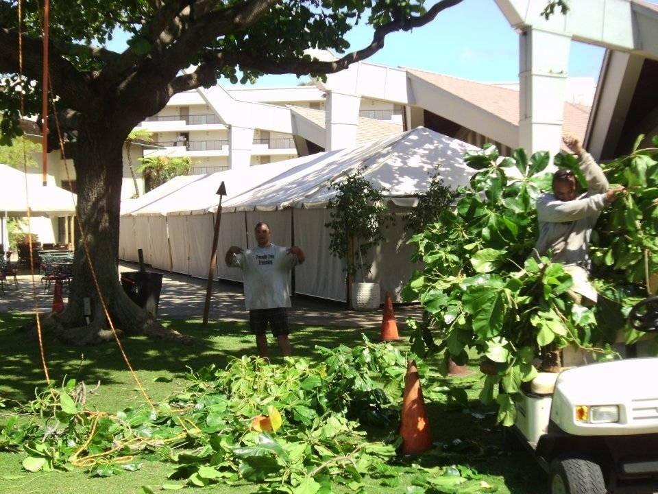 Tree maintenance jobs, and more, done by our Makawao, HI team