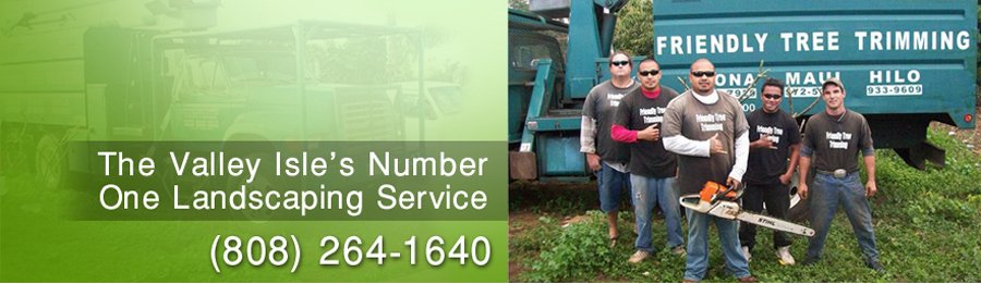 experts in tree maintenance in Makawao, HI